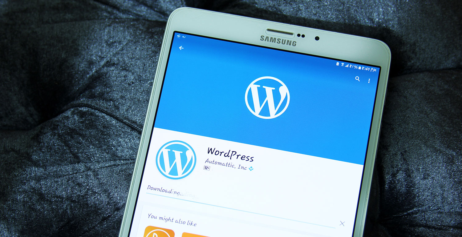 8 reasons why you may love to use wordpress